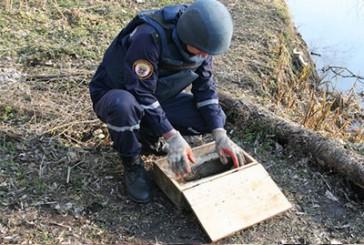 Збаразький район: знешкоджено 1 вибухонебезпечний предмет часів Другої світової війни