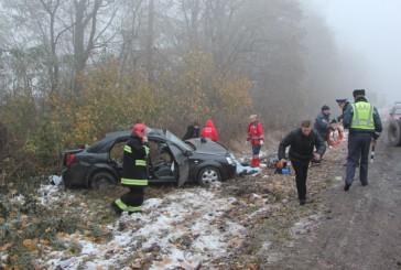 Дорожньо-транспортна пригода стала причиною смерті двох людей