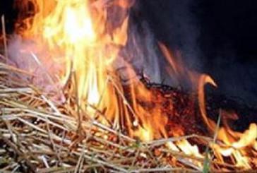 Зборівський район: під час ліквідації пожежі вогнеборцями врятовано 1 будівлю