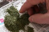 Зберігання наркотиків для власного використання від відповідальності не звільняє
