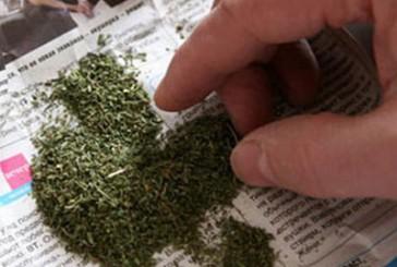 За незаконне зберігання наркотичних засобів – кримінальна відповідальність