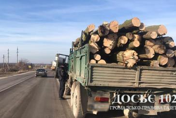 На Тернопільщині поліцейські посилюють контроль за обігом деревини