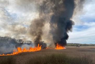Тернопільські правоохоронці встановлюють обставини двох масштабних пожеж на території області