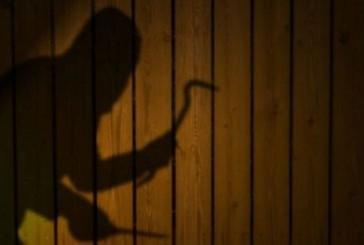 На Чортківщині чоловік обкрадав односельчан