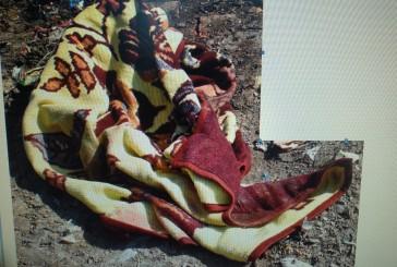 В Борщові на сміттєзвалищі виявили мертве немовля