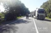 Працівники поліції встановлюють обставини двох автопригод на Кременеччині